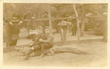 1910s ? Alligator Ride
